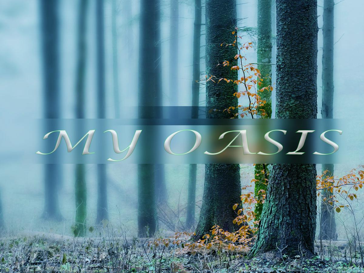 oasis-1.jpg - 759.70 kB